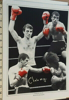 £14.99 • Buy British Boxing Star Hand Signed By Charlie Magri 16x12  With Coa