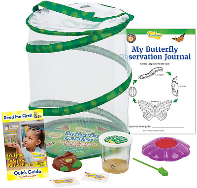 £36.89 • Buy Insect Lore Butterfly Garden: Original Habitat And Live Cup Of Caterpillars With