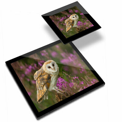£19.99 • Buy Glass Placemat  & Coaster - Pretty Barn Owl In The Forest  #15813