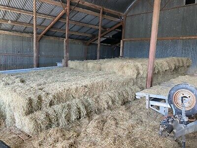 £4.50 • Buy Organic Meadow Hay Small Square Conventional Bales Freshly Cut 2021