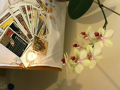 £4 • Buy Psychic Tarot Mini Reading Present And Future Or Your Choice Or Mini Read.