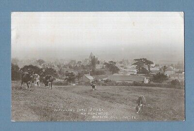 £0.99 • Buy 1916 Rp Postcard, Ditchling, Sussex - Hassocks Cds - Homewood, Burgess Hill.