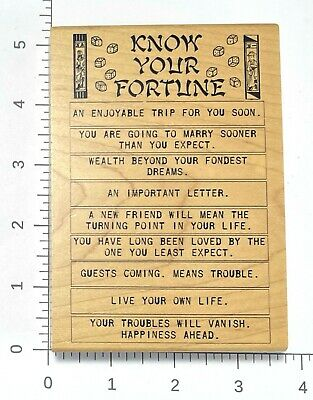 $12.49 • Buy Know Your Fortune Rubber Stamp By Inkadinkado Tin Can Mail 94118-Y Dice Cookie