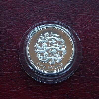 £5.50 • Buy UK 2002 Silver Proof One Pound Coin