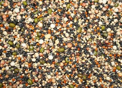 Germination Seed 950g Countrywide Soak Seed Germinating For Canaries All  Birds • 7.99£