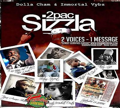 Tupac 2pac & Sizzla 2 Voices One Message Classic Mix Cd • 4£