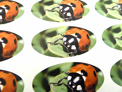 Ladybird Oval Seal Labels, Stickers For Gift Wrap, Envelopes, Bags, Cards • 2.75£