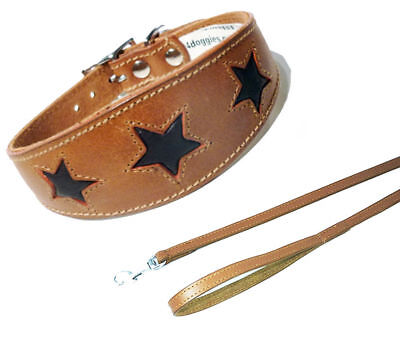 Leather Saluki Collar Afghan Dog Collar Tan With Brown Star Greyhound Whippet • 18.95£