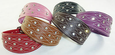 £20.30 • Buy New Diamante Stud And Stich Design Leather Collar For Whippet Greyhound Lurcher