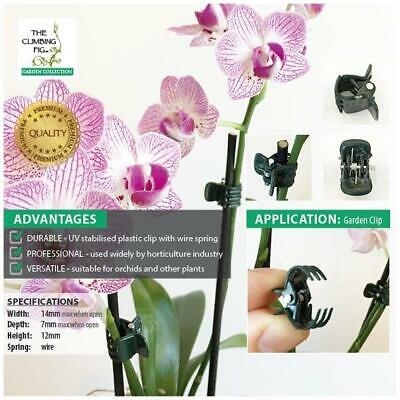 AU8.95 • Buy Small Orchid Plant Clips In DARK GREEN Plastic. Stake Phalaenopsis & Dendrobium