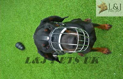 £22 • Buy Strong Metal Wire Basket Dog Muzzle For Doberman , Malinois And Other Dogs