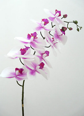 AU14 • Buy New Artificial Fake Real Touch Latex Phalaenopsis Orchid Pink Stem 90cm