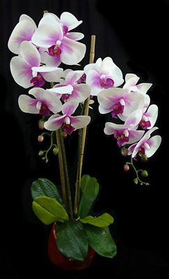 AU55 • Buy New Artificial Fake Real Touch Potted Phalaenopsis Orchid Pink 60cm H