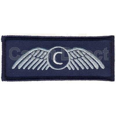 Air Cadets Civilian Wings Badge • 3.45£