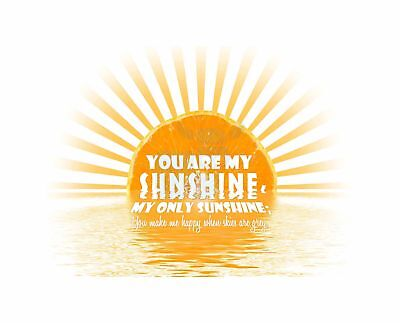 You Are My Sunshine Song Quote Motivation Typography Art Canvas Print • 16.50£