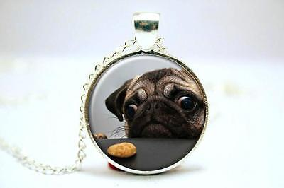 £2.50 • Buy Lovely Cute Pug With A Biscuit Dog Necklace. Stunning. In Organza Gift Bag