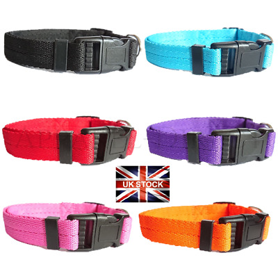Dog Puppy Collar Nylon Adjustable Collars 4 Sizes 6 Colours UK Pet Accessories  • 3.49£