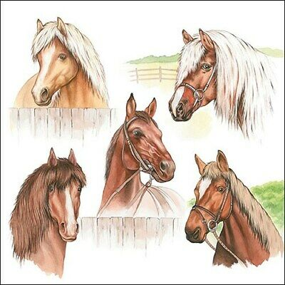 £2.50 • Buy 5 Paper Party Napkins For Decoupage Horse Range Pack Of 5 3 Ply Serviettes