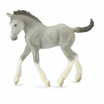 CollectA Grey Shire Horse Foal Toy Model Figure 88575 New With Tag • 7.99£