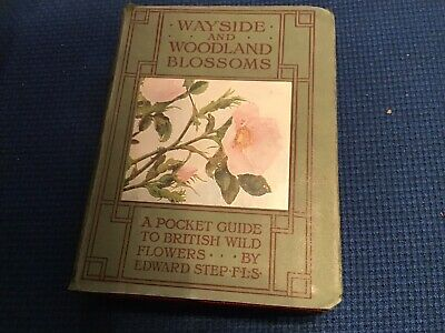 Wayside & Woodland Blossoms By Edward Step 1926 • 40£