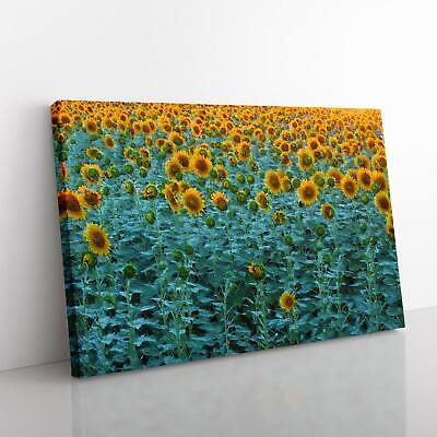 £19.95 • Buy Sunflowers Soon To Bloom Canvas Print Wall Art Picture Large Home Decor