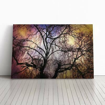 Weeping Willow Tree In Abstract Flowers Landscape Framed Canvas Print Wall Art • 22.95£