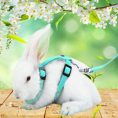 £3.19 • Buy Soft Polyester Small Pet Rabbit Harness Leash Guinea Pig Lead Rope Super