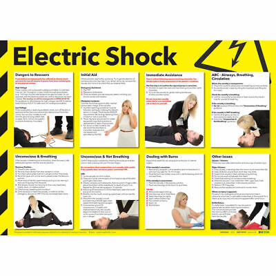 £14.69 • Buy Health And Safety 420x594mm Electric Shock Poster FA551