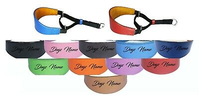 £17.95 • Buy Greyhound Whippet Leather Padded Dog Collar Personalized Name Martingale Collar