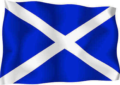 Scottish St Andrews Wavy Flag Car Exterior Vinyl Sticker Scotland Satire 10 X 5  • 4.50£