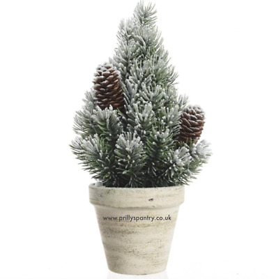 Beautiful Table Top Snowy Bushy Mini Pine Christmas Tree In Grey Pot - 24cm   • 12£