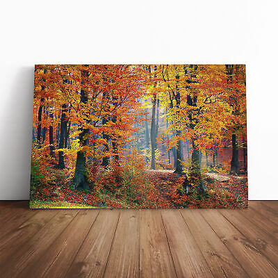 Landscape Forest In The Autumn Canvas Print Wall Art Picture Large Home Decor • 24.95£