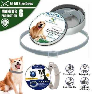 Anti Flea&Tick Neck Collar Strap For Dog Cat Pet 8 Months Protection Adjustable • 4.59£