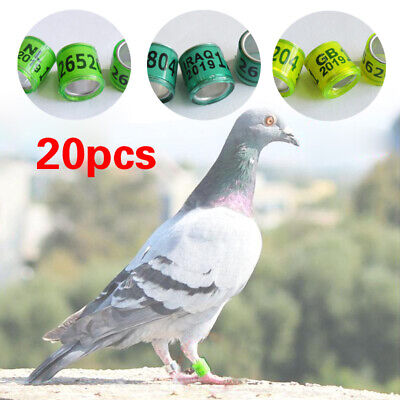 £1.42 • Buy 20Pcs Birds Rings  Racing Pigeon Leg Bands Parrot Finch  Canary Poultry Rings