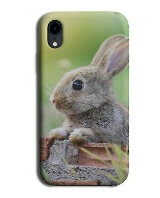 Easter Bunny Photograph Phone Case Cover Rabbit Ears Nature Grey Gift B424 • 9.99£