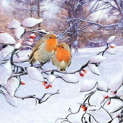 £2.50 • Buy 5 Paper Party Napkins Robins On Branch Pack Of 5 3 Ply Tissue Serviettes Birds