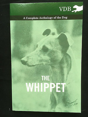 Whippets Dogs Hounds Racing Coursing Breeding Pedigrees Whippet Lurchers • 12.95£