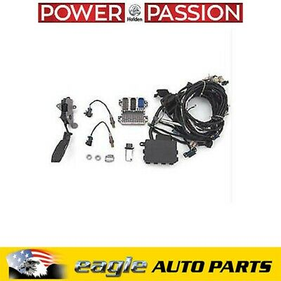 AU3450 • Buy Holden VF HSV GTS CHEV LSA 6.2L Engine Controller & Wiring Harness  # 19259293