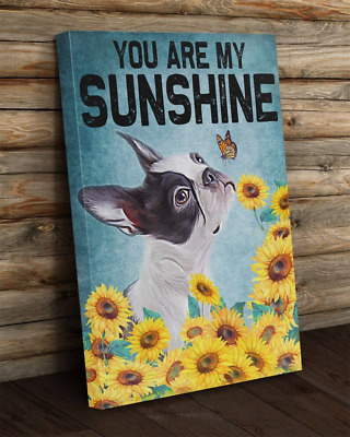 You Are My Sunshine Boston Terrier Sunflower Dog Lover Decor Canvas No Frame • 20.31£