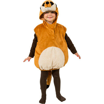 Sweet Meerkat Costume Set For Boys Childrens Fancy Dress Girl Animals 3-4 Years • 16.88£