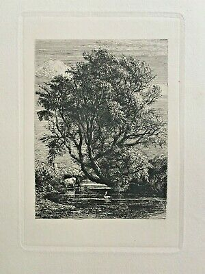 Original Etching By Samuel Palmer - The Willow, 1850 • 250£