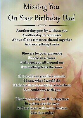 Missing You On Your Birthday Dad Memorial Graveside Poem Card & Free Stake F427 • 2.99£