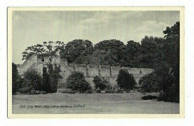 Old City Wall, New College Garden, Oxford, Postcard.  • 3£