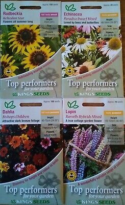 New King's Seeds Echinacea Rudbeckia Russell's Lupin Dahlia Basket Bedding Plant • 6.99£