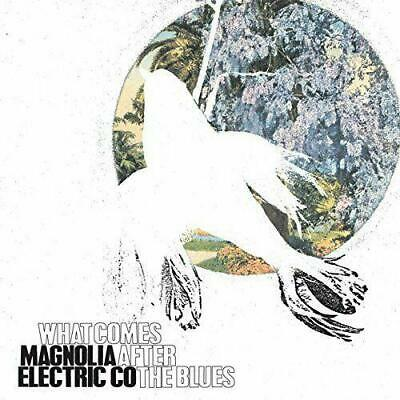 Magnolia Electric Co. - What Comes After The Blues [VINYL] • 16.99£