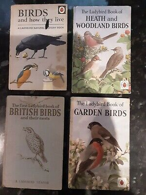 Vintage Ladybird Books. 4 Books On Birds  • 7.50£