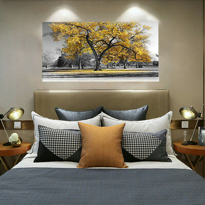 Large Tree Yellow Leaves Nature Pictures Print Canvas Wall Art Prints UnframedUK • 4.19£