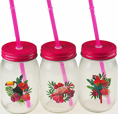3 Hot Pink Tropical Bird Drinking Mason Glass Jars With Lid And Reusable Straw • 11.99£