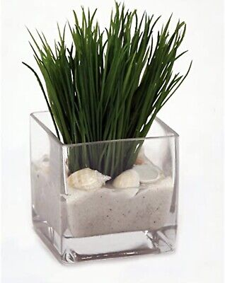 """£8.95 • Buy 10cm X 10cm Square Glass Clear Cube """"Glass Cube Vase"""" """"Small Square Vase"""" """"NEW"""""""