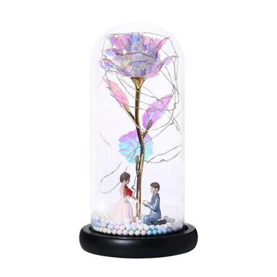 AU24.15 • Buy Valentine's Day Gift,Wedding Rose Flower With Lamp Glass Cover Decoration OrD6E2